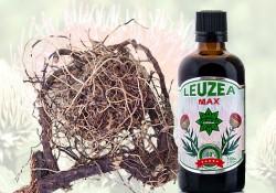 Leuzea-Blog-Image-800x368
